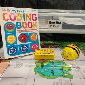 Bee Bot Kit